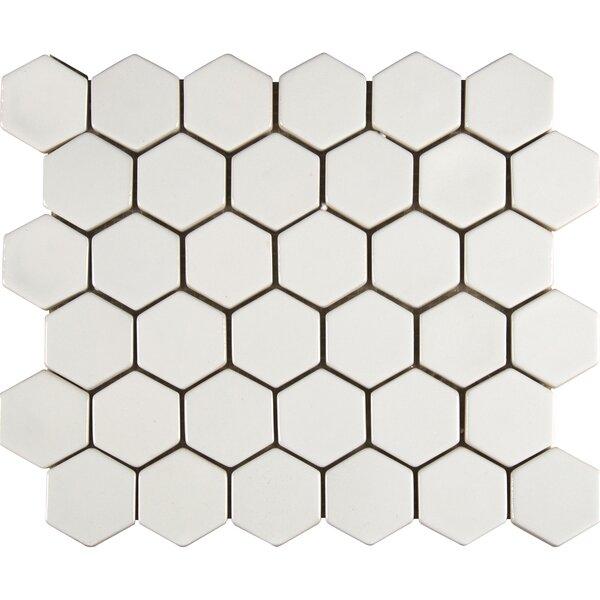 Hexagon Ceramic Mosaic Tile in Whisper White by MSI
