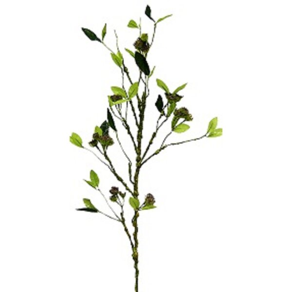 2 Piece Seed Clusters Branch (Set of 2) by August Grove