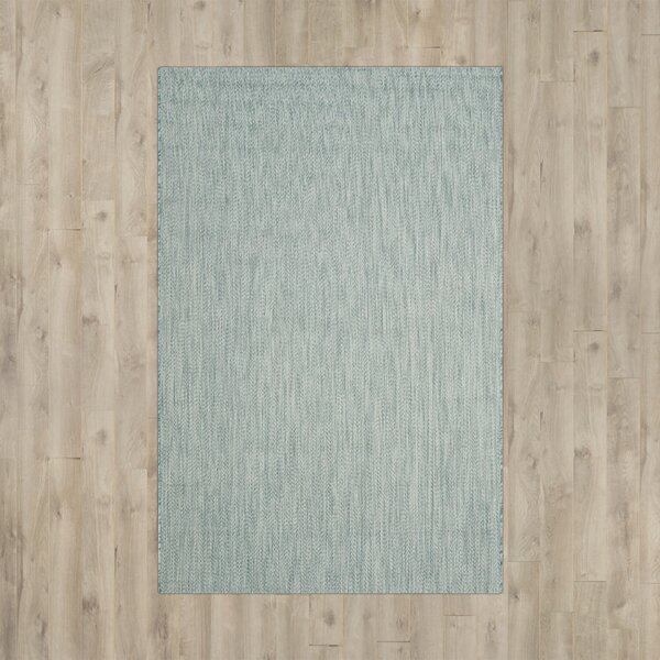 Ferdinand Aqua/Gray Indoor/Outdoor Area Rug by Modern Rustic Interiors