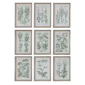 Herb Garden Prints 9 Piece Framed Graphic Art Set by August Grove