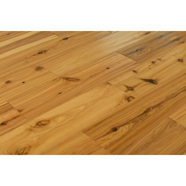 Antwi 5-1/2 Engineered Australia Cypress Hardwood Flooring in Urethane by Albero Valley
