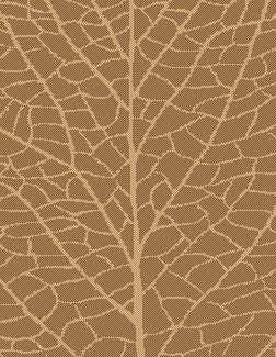 Brown/Natural Indoor/Outdoor Reversible Area Rug by lava