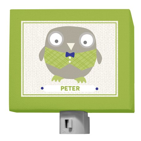 Happy Owl by Vicky Barone Personalized Night Light by Oopsy Daisy