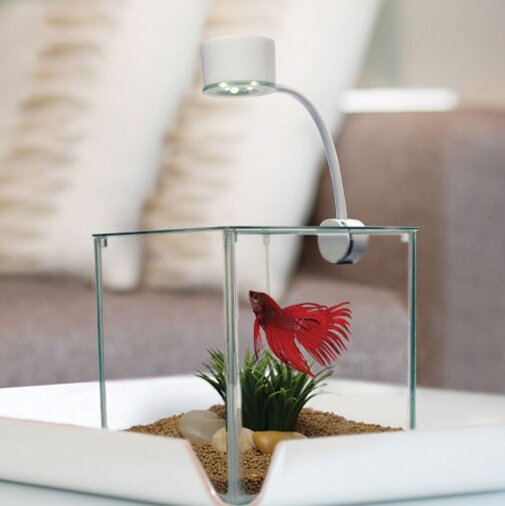 Marina 0.9 Gallon Cubus Betta Aquarium Kit by Marina by Hagen
