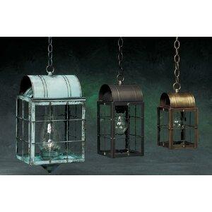 100 Series 1-Light Outdoor Hanging Lantern