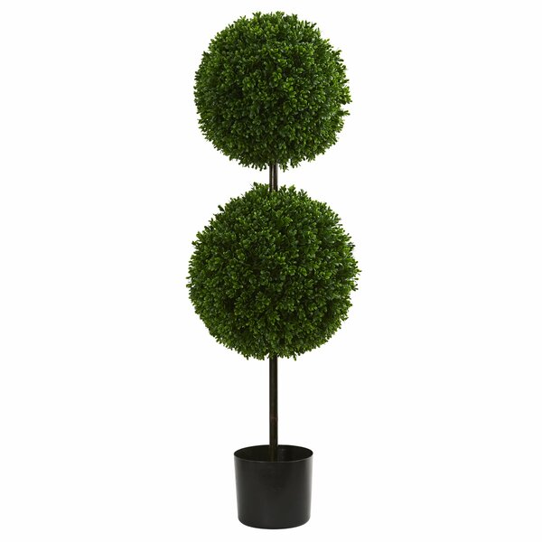 Double Ball Boxwood Topiary by Darby Home Co