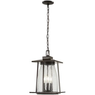 Helmick 4-Light Outdoor Hanging Lantern By Alcott Hill Outdoor Lighting