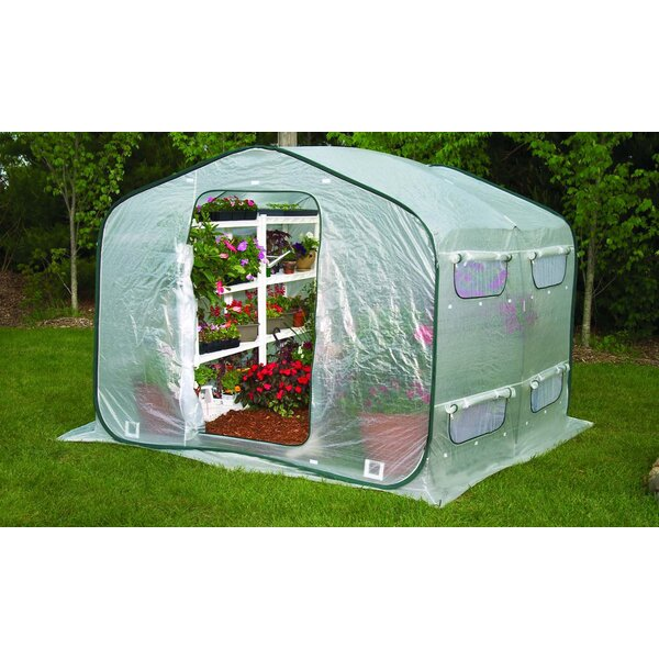 Dreamhouse 8 Ft. W x 8 Ft. D Greenhouse by Flowerhouse