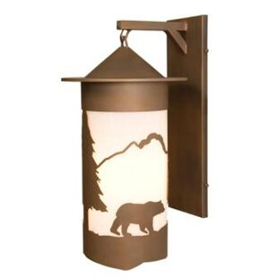 Inexpensive Bear Pasadena Extra Large Hanging 1-Light Outdoor Wall Lantern By Steel Partners