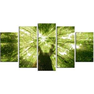 'Sunlight Peeking through Green Tree' Photographic Print Multi-Piece Image on Canvas by Design Art