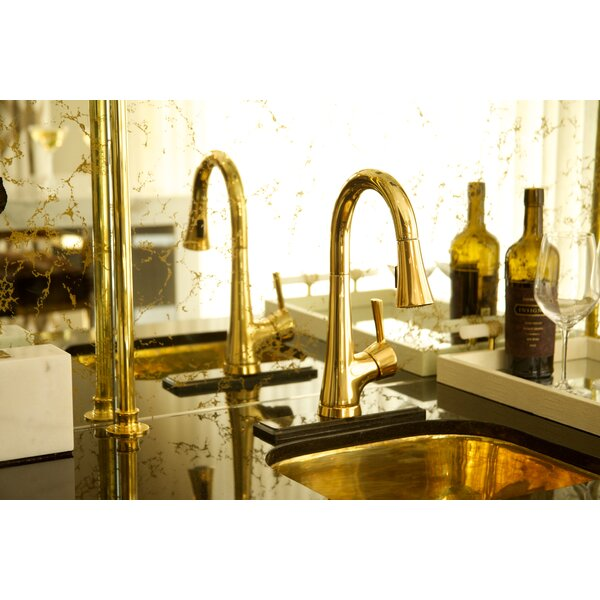 Vespera Pull Down Bar Faucet by Newport Brass Newport Brass