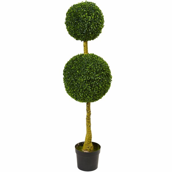 4.5 Double Boxwood Topiary by Darby Home Co