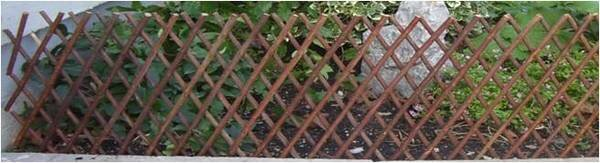 Accordion Wood Expanding Trellis by Mr. MJs