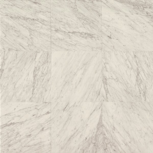 18 x 18 Marble Field Tile in White Carrara by Grayson Martin