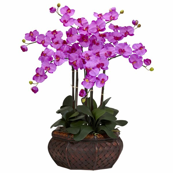 Large Silk Orchids Floral Arrangement in Planter by Nearly Natural