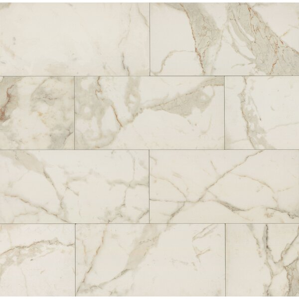 Classic Moderne 12 x 24 Porcelain Field Tile in Calacatta by Grayson Martin