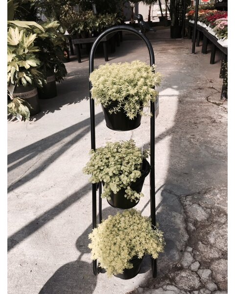 Herb Garden Etagere Plant Stand by Artscapes