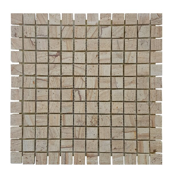 0.87 x 0.87 Stone Mosaics Tile in Brown by Abolos