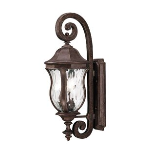 Look for Coutu Outdoor Wall lantern By Darby Home Co