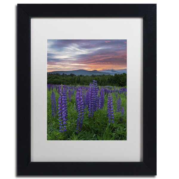 Fire in the Sky by Michael Blanchette Framed Photographic Print by Trademark Fine Art