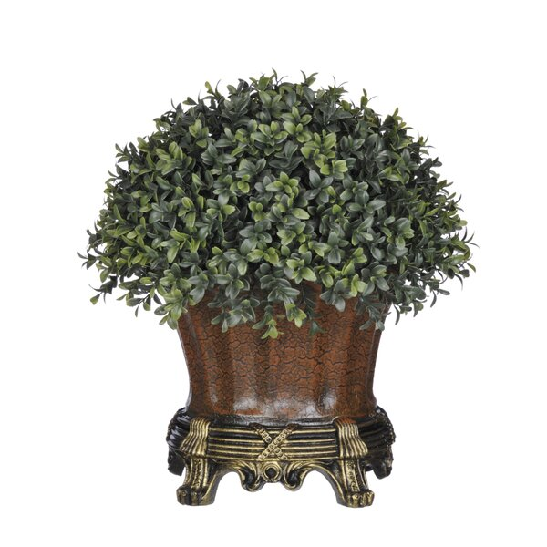Artificial Boxwood Half-Ball Topiary in Urn by House of Silk Flowers Inc.
