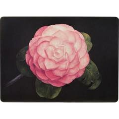 Camellia 16 Placemat (Set of 4) by Rockflowerpaper