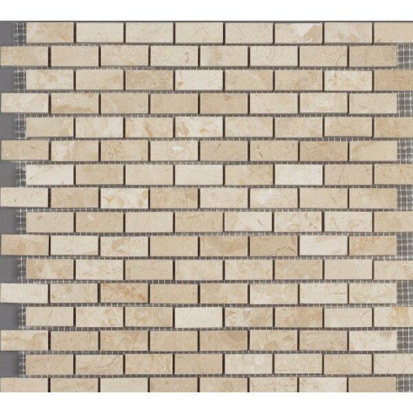0.62 x 1.37 Marble Subway Tile in Crema Nouva by Ephesus Stones