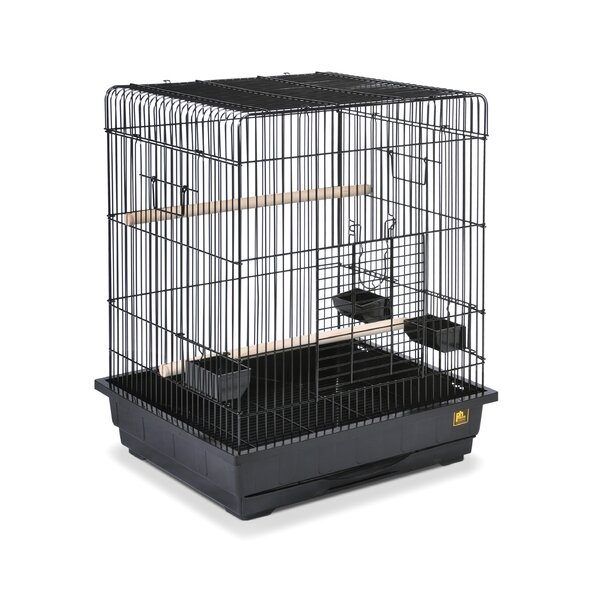 Square Roof Parrot Bird Cage by Prevue Hendryx