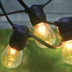 24-Light 54 ft. Globe String Light