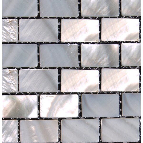 0.5 x 1 Seashell Mosaic Tile in Natural by Matrix-Z
