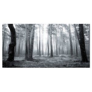 'Black and White Foggy Forest' Photographic Print on Wrapped Canvas by Design Art
