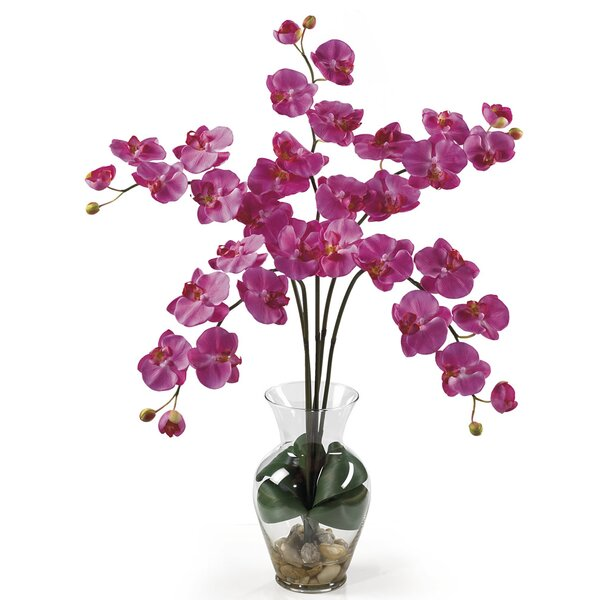 Liquid Illusion Phalaenopsis Silk Orchid Arrangement in Dark Pink by Nearly Natural