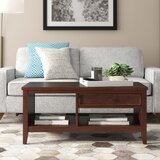 Nelsonville Coffee Table with Storage by Alcott Hill®