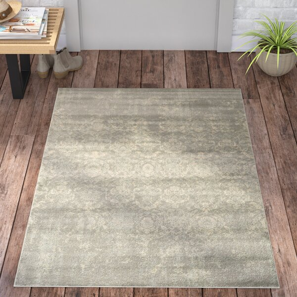 Kingfisher Gray Area Rug by Trent Austin Design