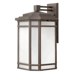 Shopping for Chianna Outdoor Wall Lantern By Darby Home Co