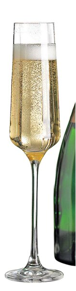 Fusion Infinity Champagne Flute (Set of 4) by Wine Enthusiast