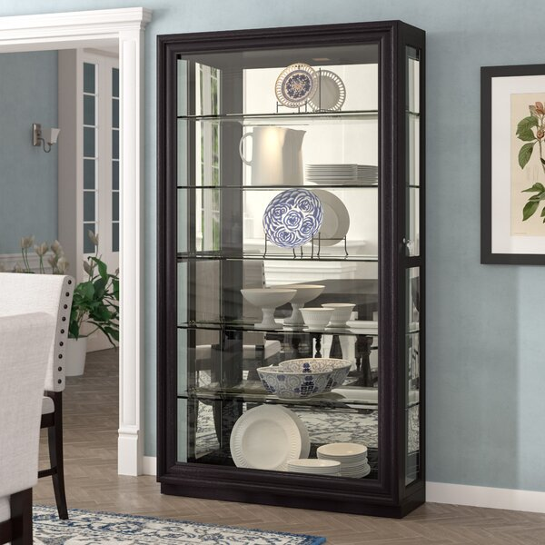 Albrightsville Lighted Curio Cabinet by Darby Home Co