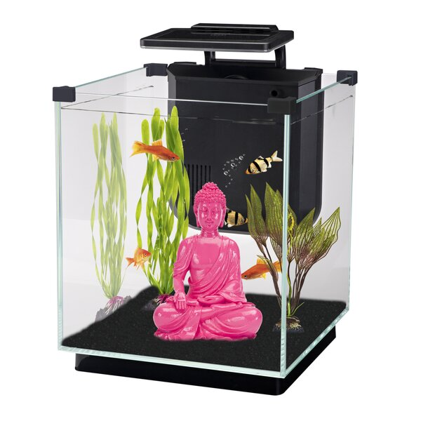 Simplicity 5.5 Gallon Desktop Aquarium Tank by Penn Plax