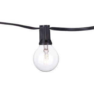 25-Light Globe String Lights By Aspen Brands