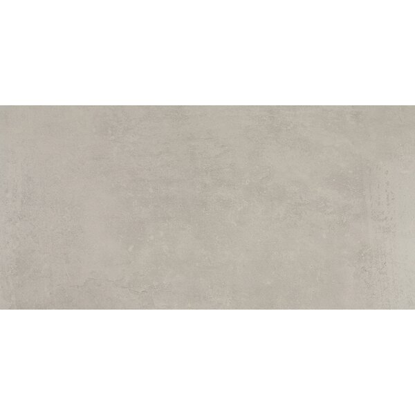 Fairfield 12 x 24 Porcelain Field Tile in Dove Gray by Itona Tile
