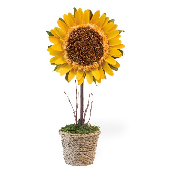 Potted Sunflower Stem in Pot by August Grove