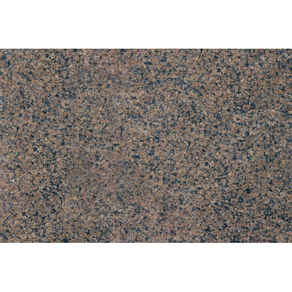 18 x 31 Polished Granite Tile in Tropic Brown by MSI