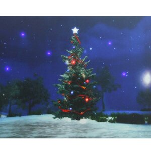 Christmas Tree at Night Battery Operated LED Lighted Graphic Art on Canvas by Northlight Seasonal