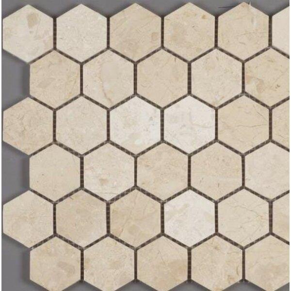 Honeycomb Hex Polished 2 x 2 Mosaic Tile in Crema Nouva by Ephesus Stones