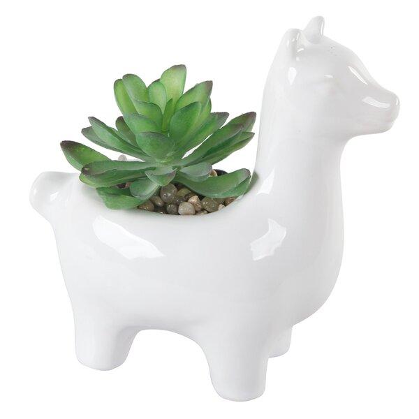 Ceramic Llama Desktop Succulent Plant in Pot by Langley Street