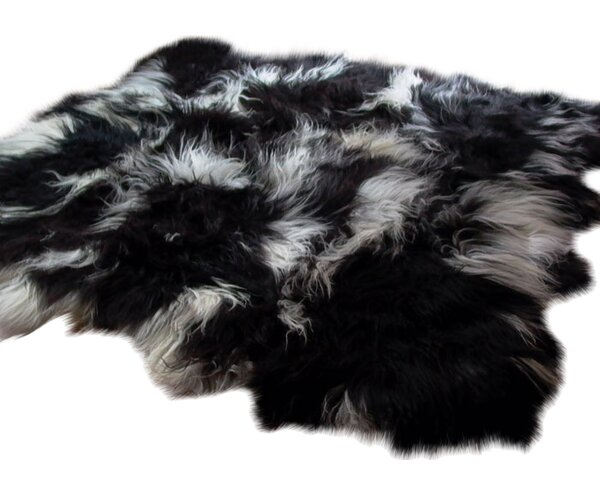 Icelandic 6 Pelt Black/White Area Rug by Fibre by
