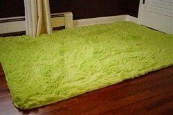 Ledoux Plush Lime Area Rug by Ebern Designs