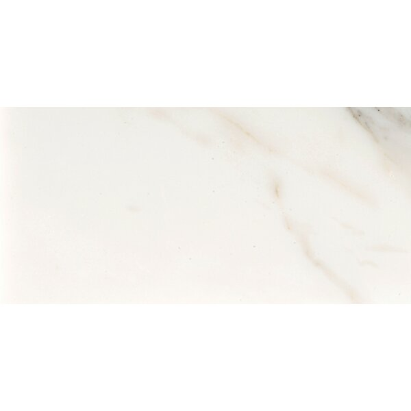 Marble 4 x 8 Tile in Calacata Oro Polished by Emser Tile