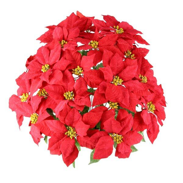 Poinsettia Floral Arrangement by Charlton Home
