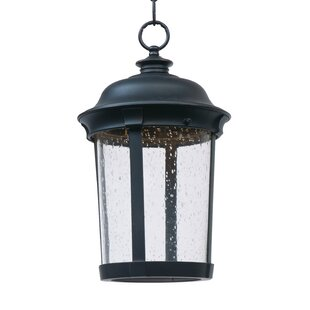 Affordable Sandusky 1-Light Outdoor Hanging Lantern By Darby Home Co